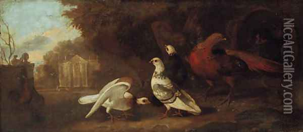 Pigeons, pheasants, and other birds in a wooded landscape, a classical facade beyond, an overdoor Oil Painting - Pieter Casteels