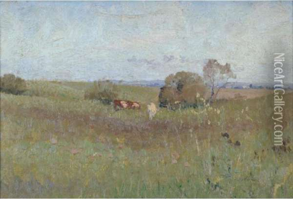 The Unploughed Field Oil Painting - Elioth Gruner