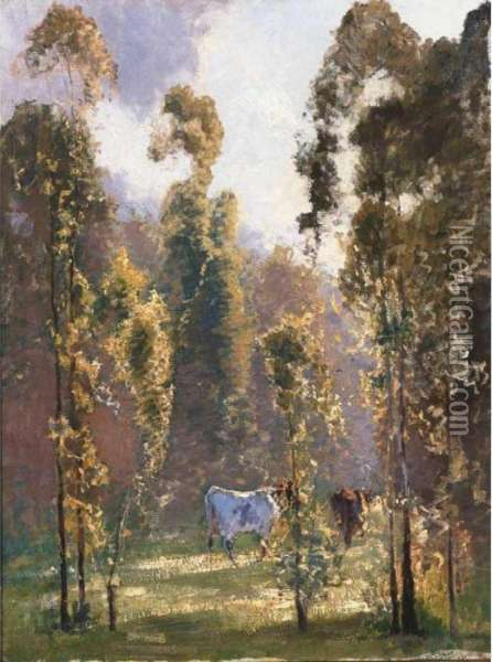 In Morning Sunlight, Richmond, New South Wales Oil Painting - Elioth Gruner