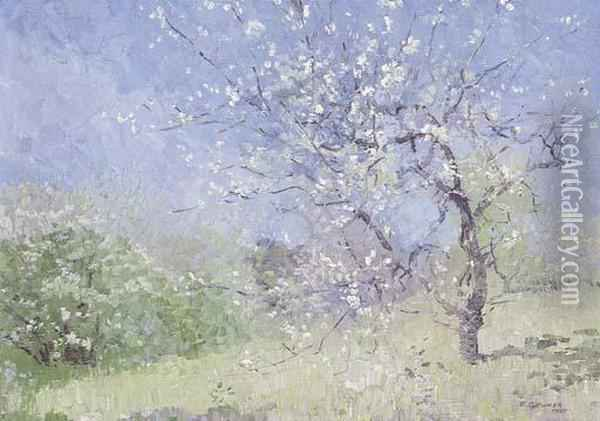 Blossoms Oil Painting - Elioth Gruner