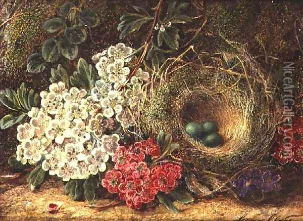 Still life with bird's nest Oil Painting - George Clare