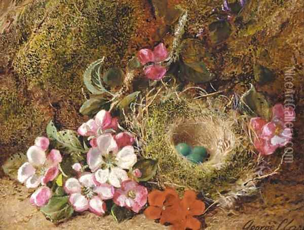 Primulas and a bird's nest with eggs on a mossy bank Oil Painting - George Clare