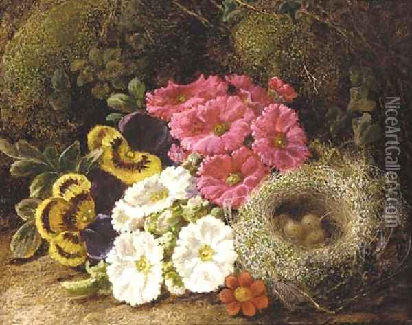 Primulas and a bird's nest on a mossy bank Oil Painting - George Clare