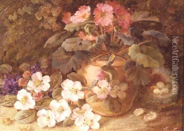 Still Life with Apple Blossom, Primula and Bird's Nest Oil Painting - Vincent Clare