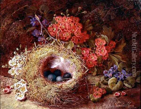 Still life of a bird's nest and blossom Oil Painting - Vincent Clare