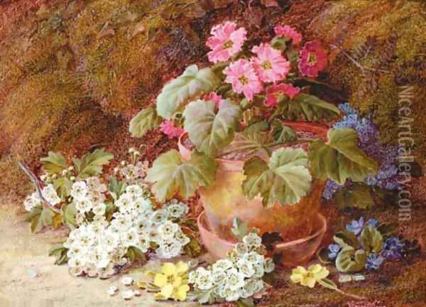 A geranium in a flower pot with primroses Oil Painting - Vincent Clare