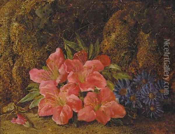 A still life of spring flowers on a mossy bank Oil Painting - Vincent Clare