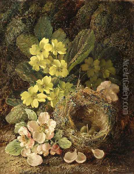 Primroses and bird's nest on a mossy bank Oil Painting - Vincent Clare