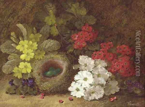 Still life of primroses, primulas, pansies, a bird's nest and eggs on a mossy bank Oil Painting - Vincent Clare