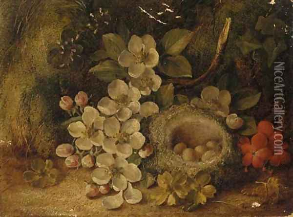 Apple blossom and a bird's nest with eggs, on a mossy bank Oil Painting - Vincent Clare