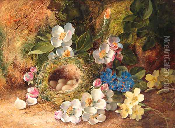 Apple Blossom, Primroses, a Bird's Nest with Eggs, on a mossy Bank Oil Painting - Vincent Clare