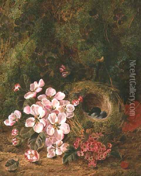 Bird's Nest Oil Painting - Oliver Clare