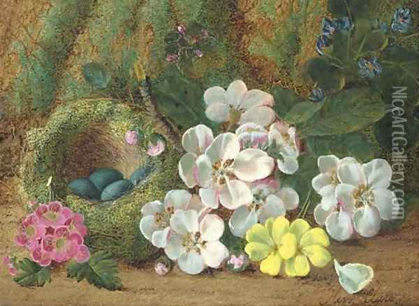 Apple blossom, primroses and a bird's nest with eggs, on a mossy bank Oil Painting - Oliver Clare