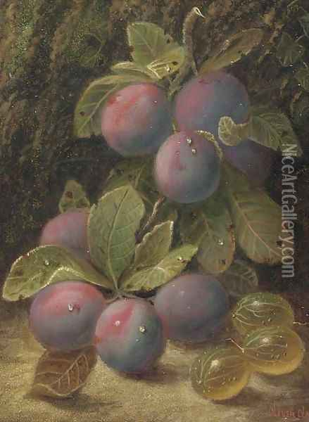 Plums and gooseberries on a mossy bank Oil Painting - Oliver Clare