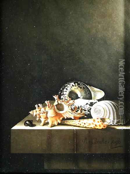 A still life of shells 1698 Oil Painting - Adriaen Coorte