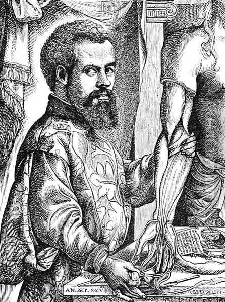 Portrait of Andreas Vesalius (1514-64) from his book 'De Humani Corporis Fabrica', 1543, illustration from 'Science and Literature in the Middle Ages and the Renaissance', 1878 Oil Painting - Jan Steven van Calcar