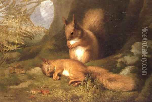 Squirrels in a Wood Oil Painting - Robert Collinson