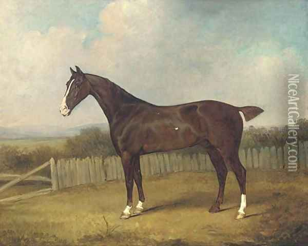 A dark brown horse in a landscape Oil Painting - Henry Bernard Chalon