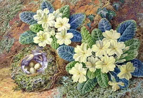 Primroses and a birds nest Oil Painting - Thomas Frederick Collier
