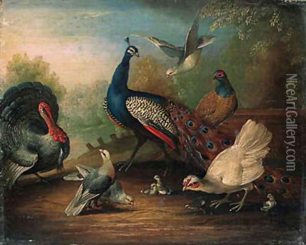 A Peacock, a Turkey, a Hen, Doves, Chicks and a Pheasant by a Lake Oil Painting - Marmaduke Cradock