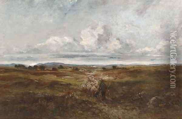 Driving the sheep Oil Painting - David Cox