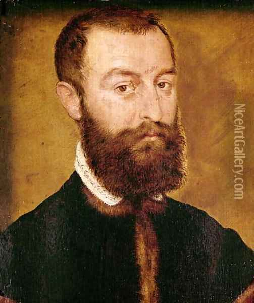 Portrait of a Man with a Beard or Portrait of a Man with Brown Hair Oil Painting - Corneille De Lyon