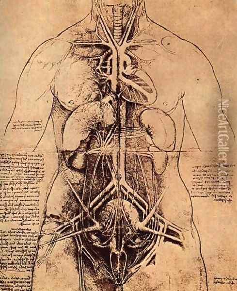 Drawing Of A Womans Torso Oil Painting - Leonardo Da Vinci