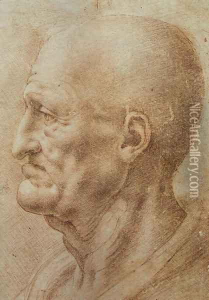Study of an Old Man's Profile Oil Painting - Leonardo Da Vinci