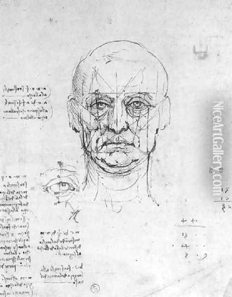 Study On The Proportions Of Head And Eyes Oil Painting - Leonardo Da Vinci