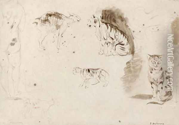 Studies of cats, other felines and two female nudes seen from behind Oil Painting - Eugene Delacroix
