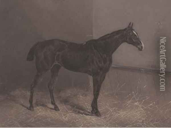Ringlet A Dark Brown Racehorse In A Stable Oil Painting - Henry Frederick Lucas-Lucas