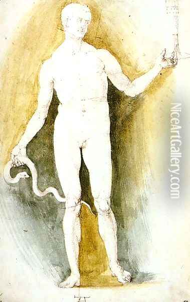 Male Nude with a Glass and Snake, so-called Asclepius Oil Painting - Albrecht Durer