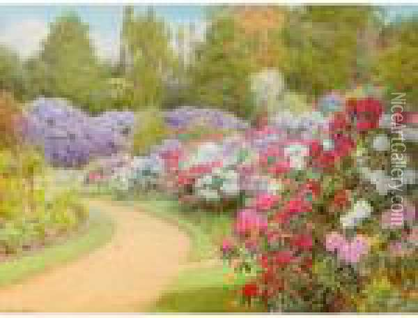 The Rhododendron Walk Oil Painting - George Marks