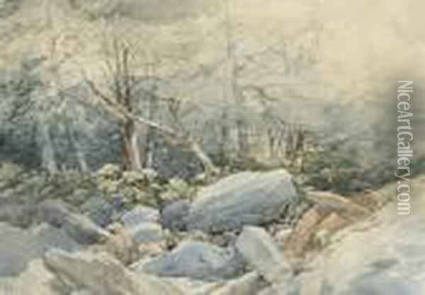 A Rocky Stream Running Through A Wood Oil Painting - John Middleton