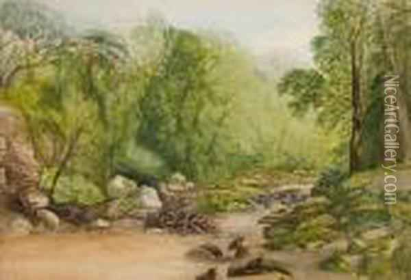 A Wooded Upland Stream Oil Painting - John Middleton