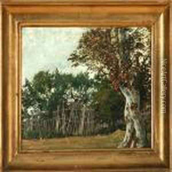 Landscape With An Old Fence Oil Painting - David Monies