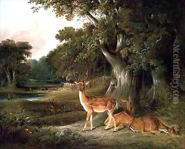Deer in a wooded landscape Oil Painting - William Daniell RA