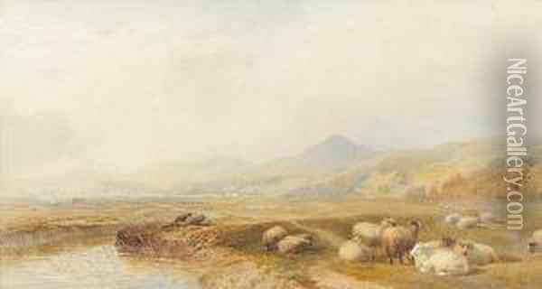 Harlech And Port Madoc, North Wales Oil Painting - Cornelius Pearson