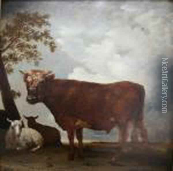 * A Copy Of Potter's Original Of 1647 (mauritshuis Oil Painting - Paulus Potter