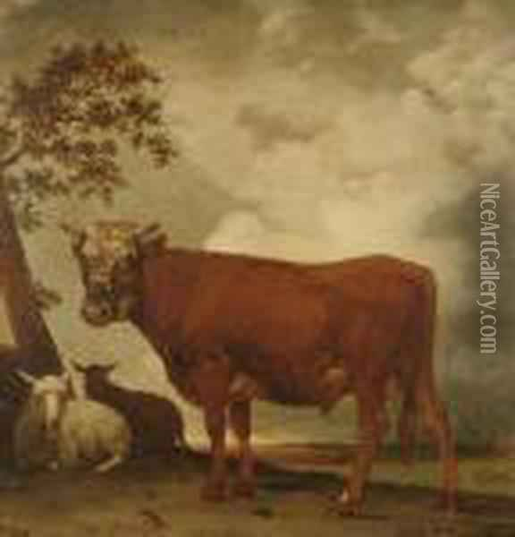 A Bull And Sheep In A Landscape Oil Painting - Paulus Potter
