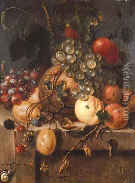 Bunches of grapes, raspberries, plums, a melon, peaches and apricots with a snail on a ledge Oil Painting - Jan van Doornik