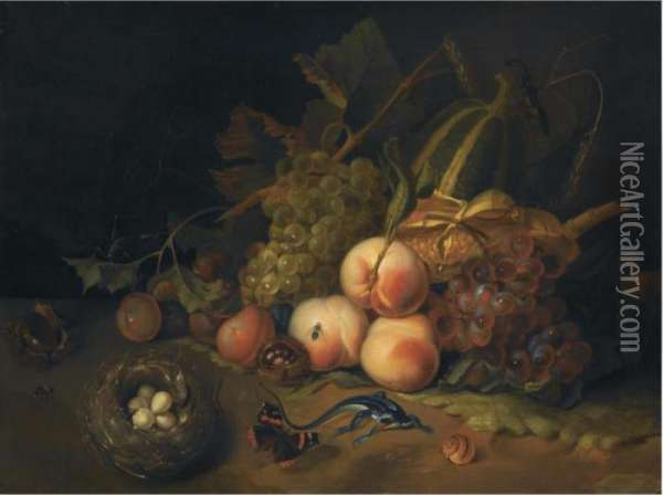 A Still Life Of Peaches, Blue  And White Grapes, Prunes And Corn,together With A Bird's Nest, A  Butterfly, A Lizard And Otherinsects Oil Painting - Rachel Ruysch