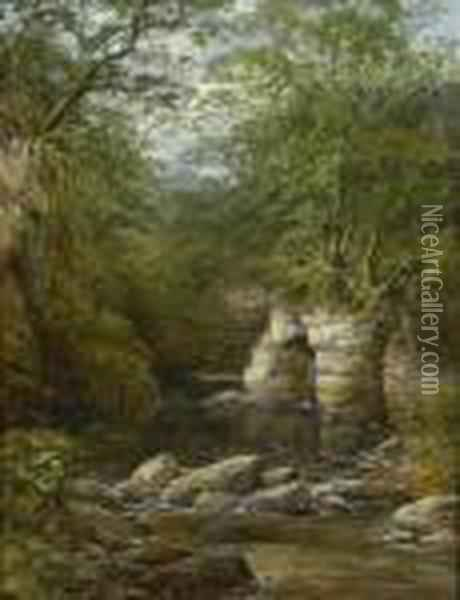 In North Wales, A Woodland Stream Oil Painting - John Brandon Smith