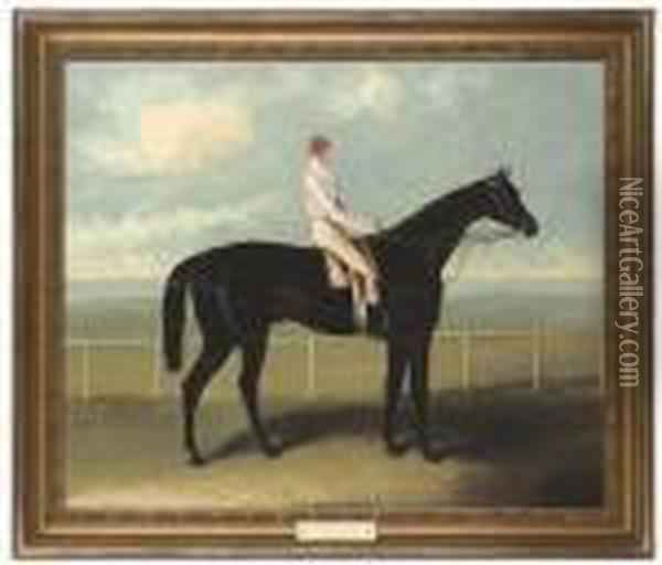 Voltigeur, With Job Mason Up Oil Painting - Samuel Spode