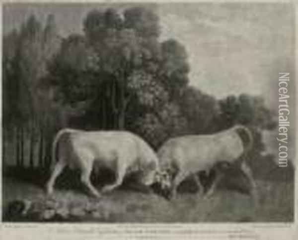 Bulls Fighting Oil Painting - George Stubbs