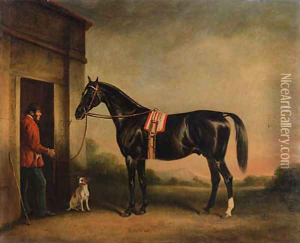 Vitellus, a black hunter, held by a groom, with a dog outside a stable Oil Painting - John Snr Ferneley