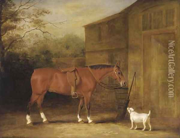 A bay hunter and a dog outside a stable Oil Painting - John Snr Ferneley