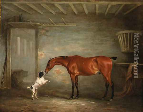 A bay Hunter with a Poodle in a Stable Oil Painting - John Snr Ferneley