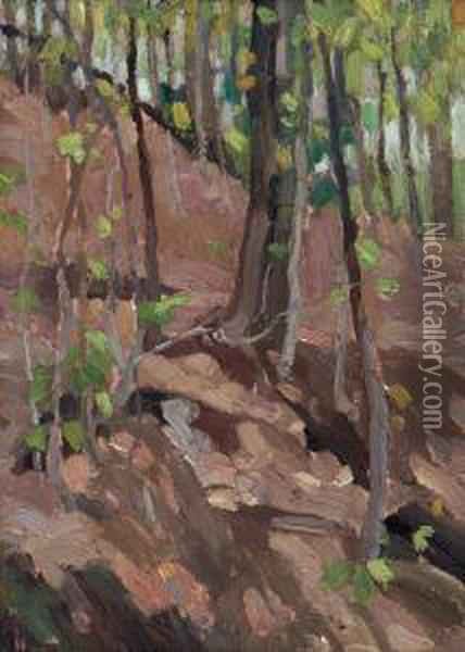 Green Wood, Algonquin Park Oil Painting - Tom Thomson