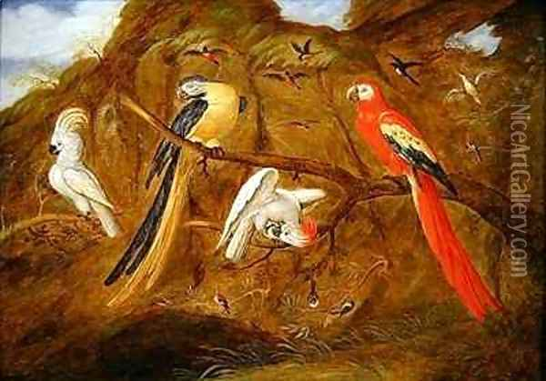 A scarlet blue and gold macaw with cockatoos and other birds in a landscape Oil Painting - Jan Baptist van Fornenburgh